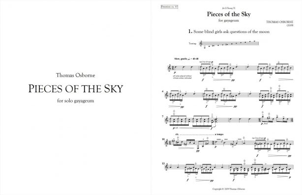 Pieces of the Sky